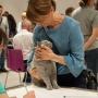 foto : Dorota Krauze - Wystawa Gliwice 17-18.06.2017 Nasz 8 miesięczny chłopczyk EDDIE Amazing Aisha*PL -klasa młodzieży 7-10 m-cy EX1 i BIV – Best in Variety i NOM BIS