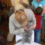 koty_brytyjskie_aisha_hodowla_kotow_wystawy_liberec2006_kassi10