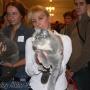 koty_brytyjskie_aisha_hodowla_kotow_wystawy_liberec2006_kassi6