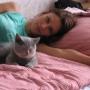 olsztyn-hotel-img_0794-koty-brytyjskie-kassidy-hodowla_kotow-amazing-aisha